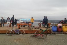 Nace Bicicletero Comunitario en Ancud